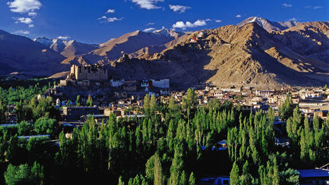 Leh town and fields