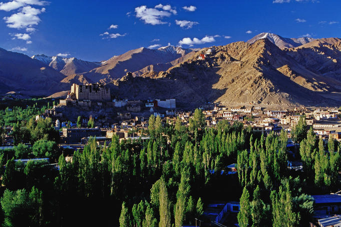 Leh town and surrounding fields.