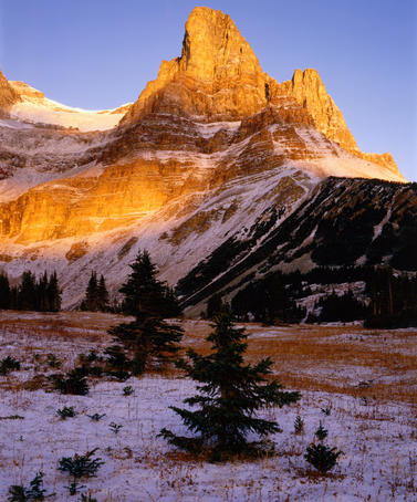 Monarch Mountain in golden light, Canadian Rockies.