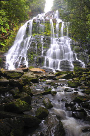 Nelson Falls at Franklin-Gordon Wild Rivers National Park.