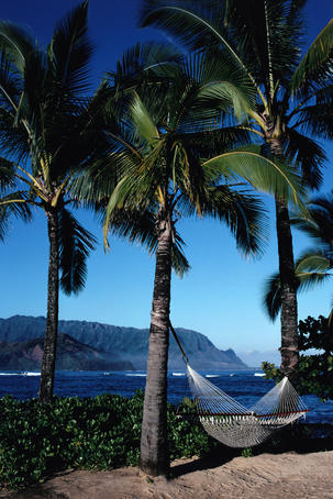 A hammock suspended between two palm trees at the Princeville Hotel, overlooking Hanalei Bay and the Bali Hai cliffs, on Kauai