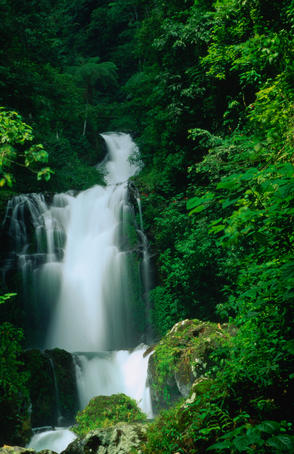 The 8th upper of the Air Terjun Gitgit Waterfalls near Lovina on Bali