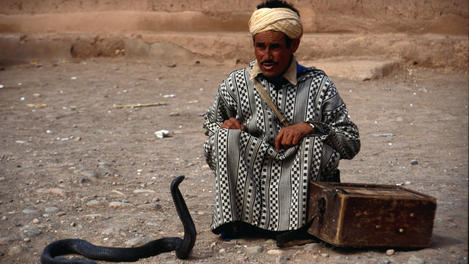 A snake charmer, Atlas Mountains
