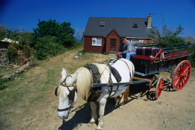 Traditional transport, a horse and trap on Sark Island, probably best known as Europe's only feudal state