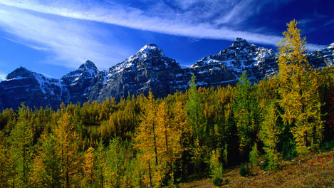 Larch Valley, Banff & Jasper National Parks