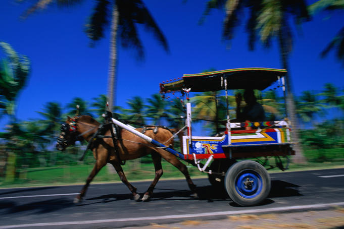 Horse and cart taxi in Labuhanlombok.