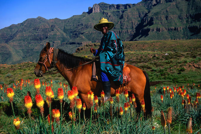 During a Malealea Pony Trek over four days to Ribaneng waterfalls. The wildflowers in the foreground are known as Red Hot Pokers