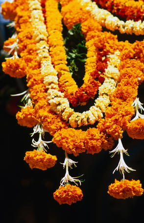Ceremonial wedding flowers at Jain Temple on Bal Gangadhar Kher Road.