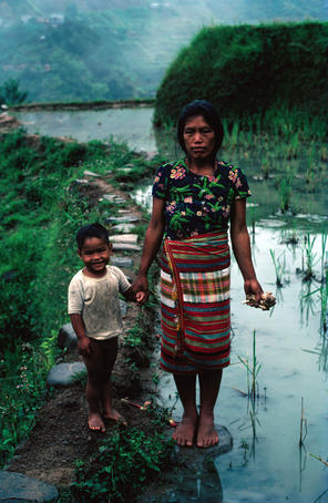 Environmental-portrait of mother and child in rice paddies.