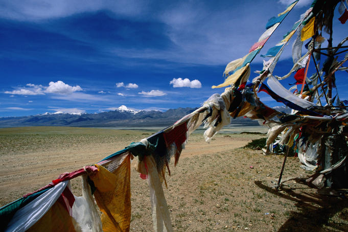 Prayer flag honouring the snow-capped Mt Kailash in background, Barkha Plains, Ngari Region.