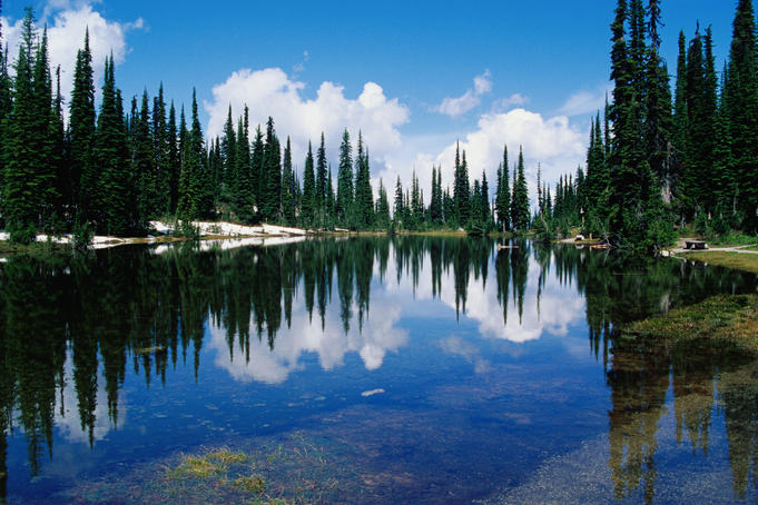 Reflections in Balsam Lake, Mt Revelstoke National Park.