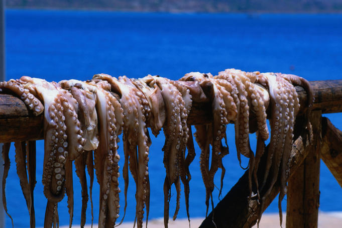 Octopus hanging to dry, Plaka.