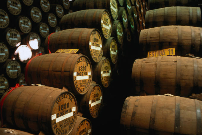 Wooden barrels of Tequila at the Jose Cuervo Distillery, the first distillery licensed to commercially produce this &quot;wine of the earth&quot;.