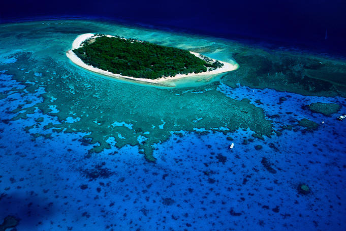 Lady Musgrave Island - Great Barrier Reef, Queensland