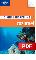 Cozumel: Diving & Snorkeling Guide