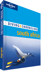 South Africa: Diving & Snorkeling Guide