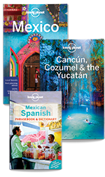 Mexico Bundle (Print Only) by Lonely Planet