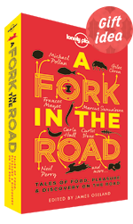 A Fork In The Road [Hardback]