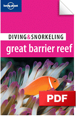 Diving Great Barrier Reef - Townsville &amp; Magnetic Island (Chapter)