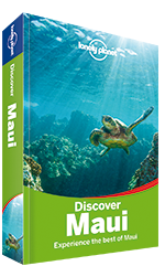 Discover Maui travel guide - 2nd edition