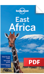 East Africa - Understand East Africa & Survival Guide (Chapter)