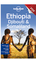 Ethiopia, Djibouti & Somaliland - Understand Ethiopia & Survival Guide (Chapter)