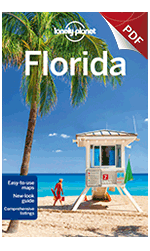 Florida - Understand Florida & Survival Guide (Chapter)