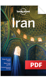 Iran - Understand Iran & Survival Guide (Chapter)