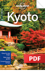 Kyoto - Downtown Kyoto (Chapter)