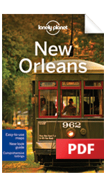 New Orleans - Understand New Orleans & Survival Guide (Chapter)