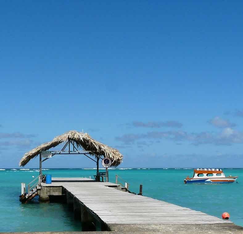 Tobago Island: Top Things To Do In Trinidad & Tobago