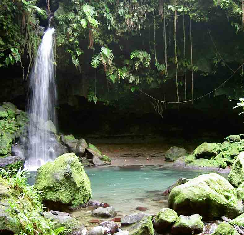 Top Things To Do In Dominica Lonely Planet
